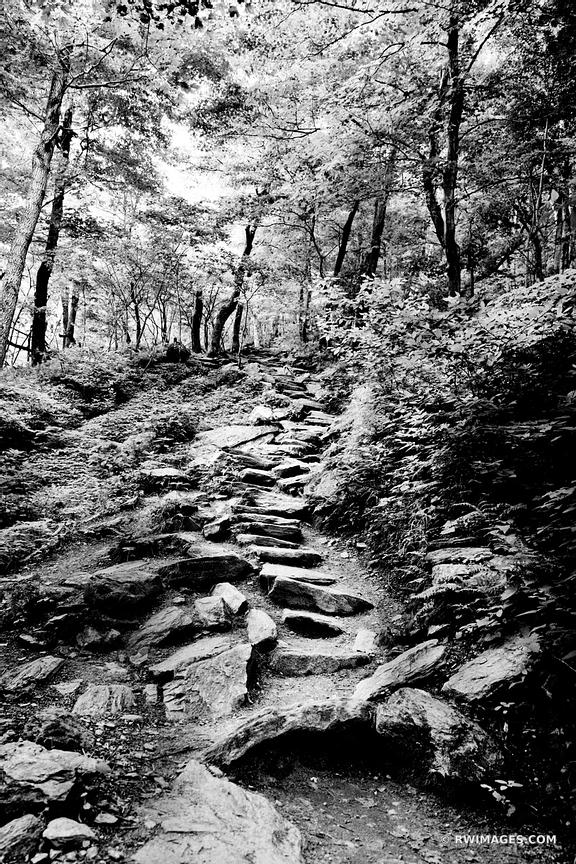 DECIDUOUS FOREST SMUGGLERS' NOTCH TRAIL VERMONT BLACK AND WHITE