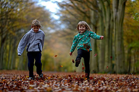 Young boy and girl kicking leaves in woodland Norfolk autumn