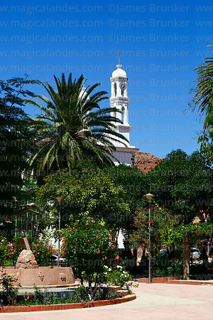 Church tower and palm tree in Plaza Camargo, Camargo, Chuquisaca Department, Bolivia
