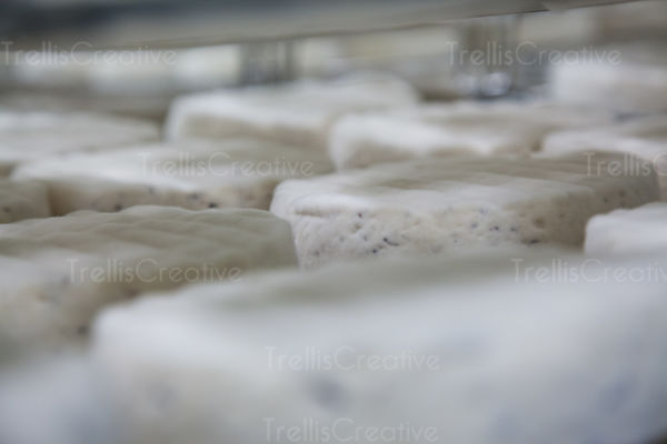 Freshly made goat cheese ageing on drying rack