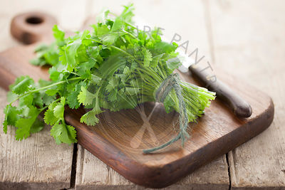 Bunch of Coriander on Wooden Chopping Board