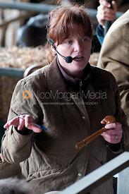 The auctioneer at a cattle auction