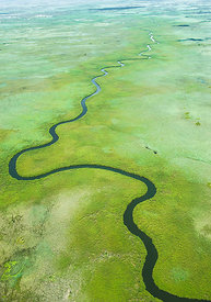 Aerial view of meandering Ngoga channel which is in the Okavango Delta swamp, Botswana 2011
