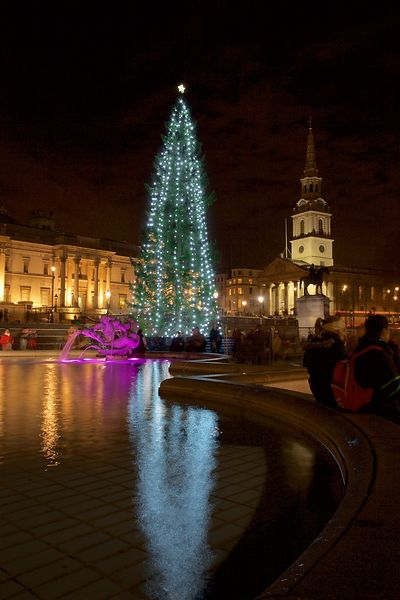 Christmas Tree in Trafalgar Square and  St Martins in the Fields Church Behind