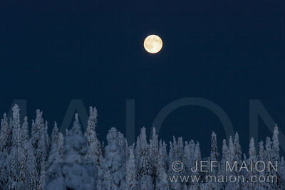 Winter full moon