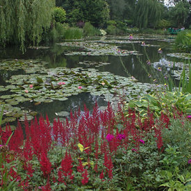 Monet - Giverny, France