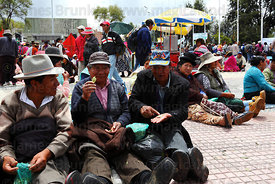 Men chewing coca leaves ( Erythroxylum coca ) at an event promoting traditional uses of the coca leaf , La Paz , Bolivia
