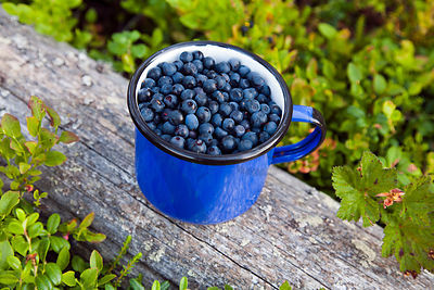 Blueberries in Metal Cup