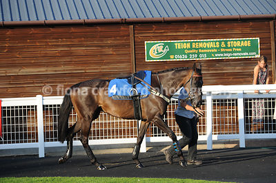 22nd August 2013 7.05pm Handicap Hurdle with winner Sugar Hiccup