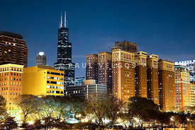 Chicago Skyline at Night with Sears-Willis Tower Building