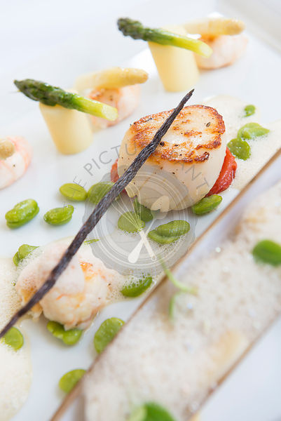 Orkney Island Scallops, pan fried, with asparagus spears.