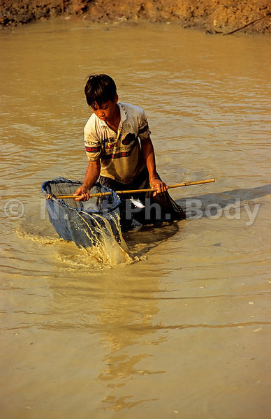 PECHE SUR LE TONLE SAP, KOMPONG CHHNANG, CAMBODGE//CAMBODIA, KOMPONG CHHNANG, FISHING ON THE LAKE