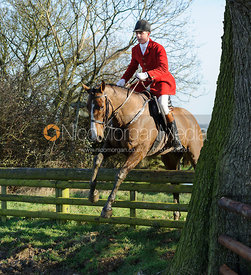 Robert Medcalf jumping a hunt jump on Green Lane