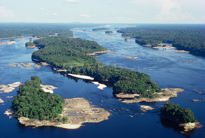 Aerial view of Amazonia, Brazil. Upper Rio Negro at equator.