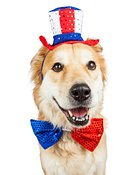 Happy Independence Day Large Dog