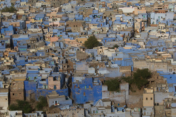 Looking down on blue city of Jodhpur, Rajasthan, India