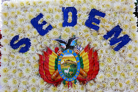 Detail of floral tribute with the Bolivian coat of arms,  Dia del Mar / Day of the Sea, La Paz, Bolivia