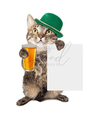 Cat in St Patts Day Hat With Blank Sign
