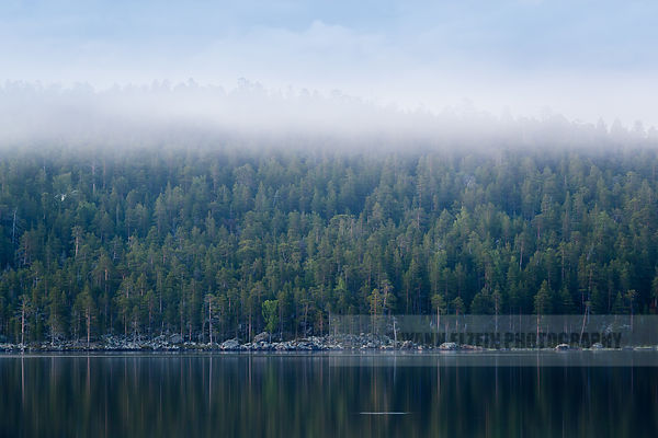 Foggy shore of the lake