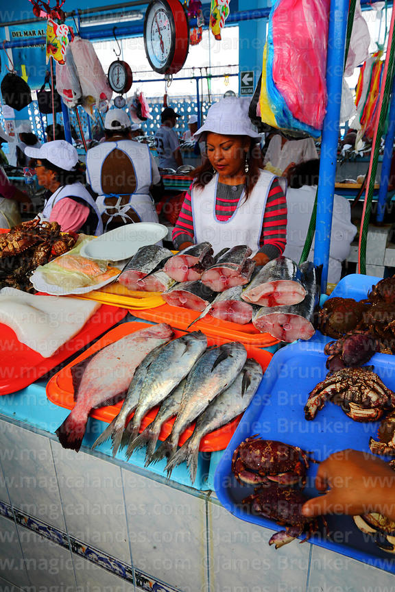 Magical Andes Photography | Stall selling freshly caught