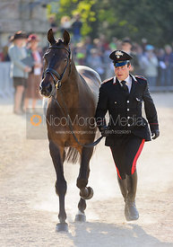 Mattia Luciani and PARKO 4 - Mitsubishi Motors Badminton Horse Trials 2013