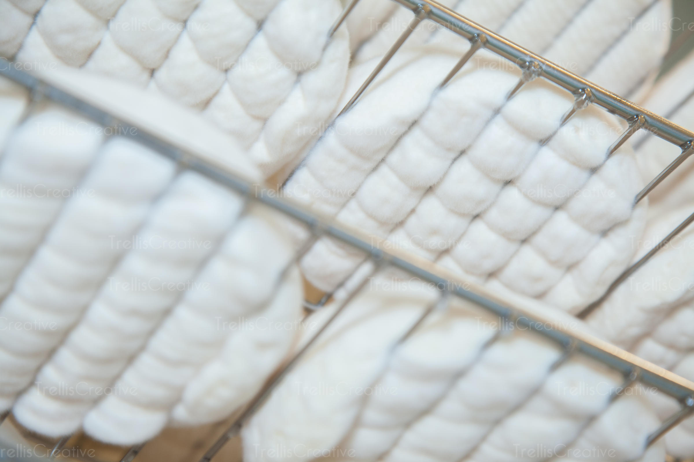 Close-up of white soft goat cheese on metal rack