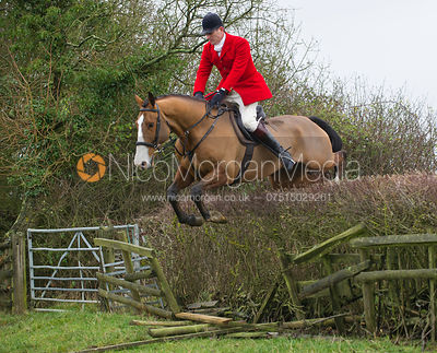 The field jumping at Mrs Wilson's Covert - Cottesmore Hunt at Ranksboro 27/11/12