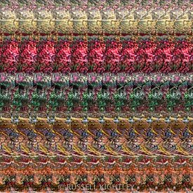AUTOSTEREOGRAM DNA Qualia's Meadow 1