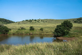 Cradle of Humankind World Heritage Site