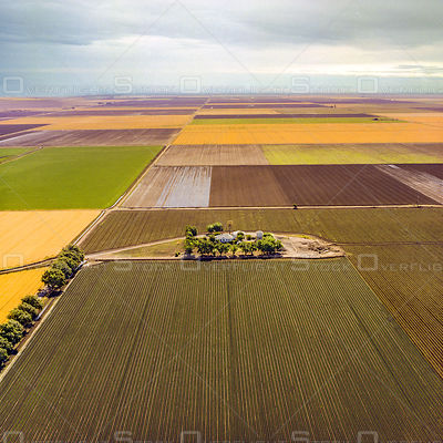 Farmland San Joaquin Valley California