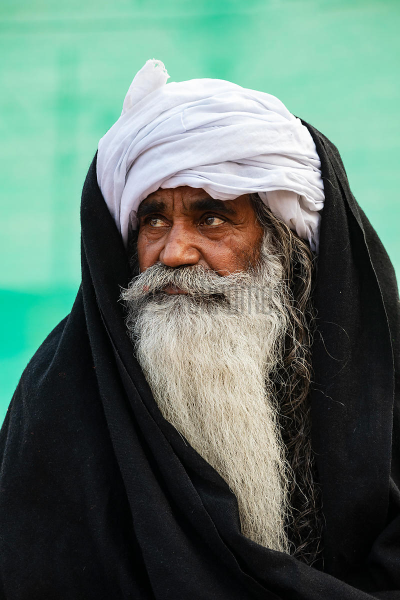 Portrait of a Sikh Guru