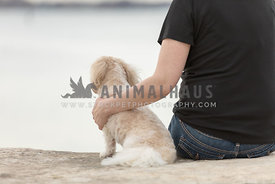 An owner sitting next to a small cream dog on a stone bench