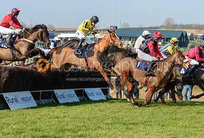 Gina Andrews (SAMARNNI) - Race 1 - Conditions race. The Cottesmore at Garthorpe