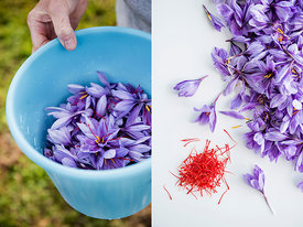 The Cornish Saffron Company