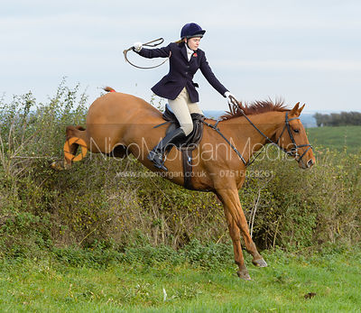 jumping a hedge near Clawson Thorns