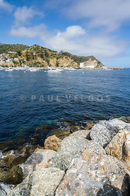 Catalina Island Casino and Avalon Harbor Photo