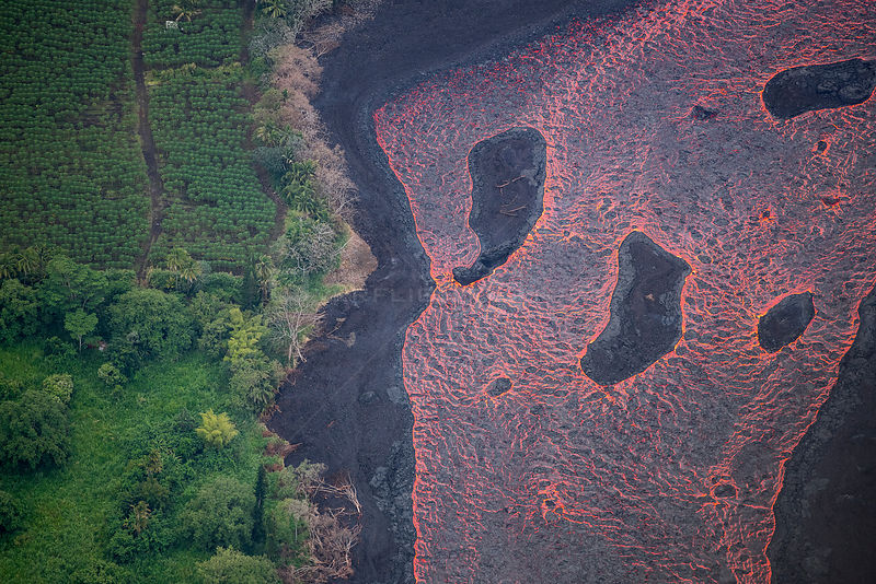 Aerial view of a wide river of lava flowing past an orchard in Kapoho, Puna District, Hawaii. June 2018.