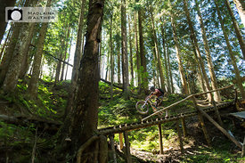 Florian Scheible riding at Bikepark Leogang. Austria.