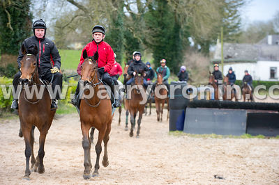 5th March, 2015.Tu Va Stables Headman Paul Cullen (2nd from left) with the racehorse 'Road to Riches'  at Trainer Noel Meade'...