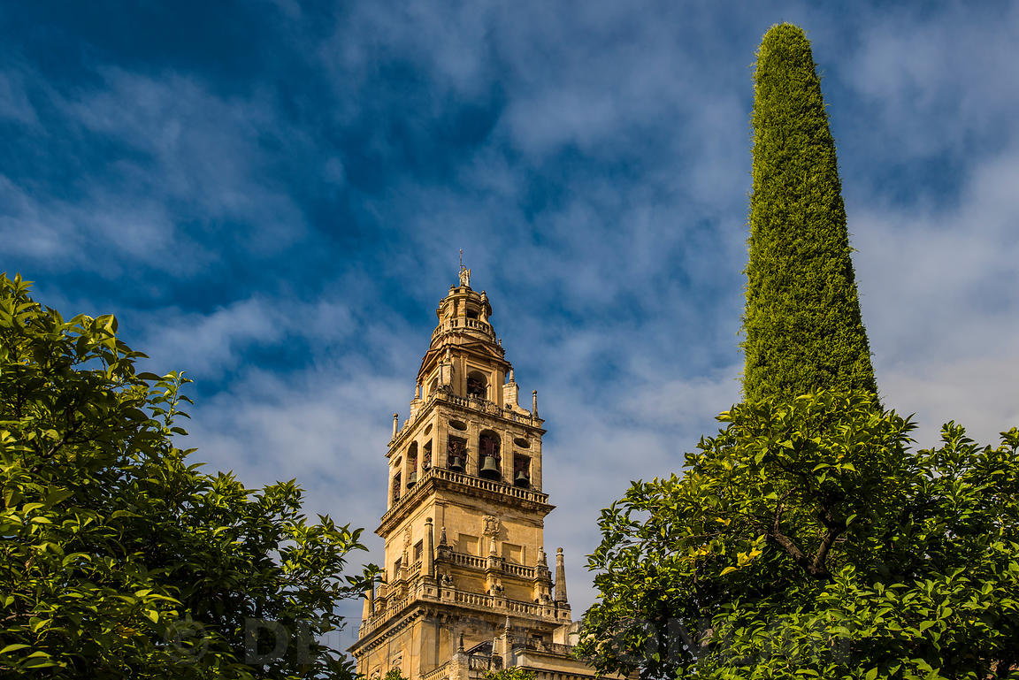 MEZQUITA BELL TOWER, CORDOBA , SPAIN