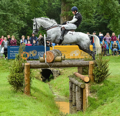 William Fox-Pitt and LUXURY FH, Equitrek Bramham Horse Trials 2018