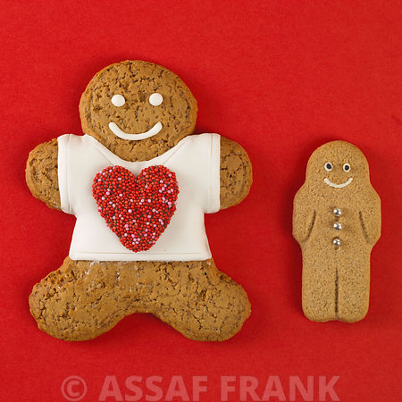 Gingerbread man with a child