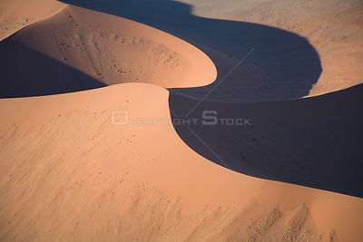 Aerial of a star dune in the Sossusvlei sand-dunes, Namibia