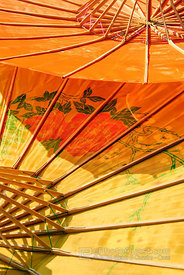 Coloured Umbrella