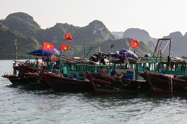 Fishing Boats Moored in Halong Bay