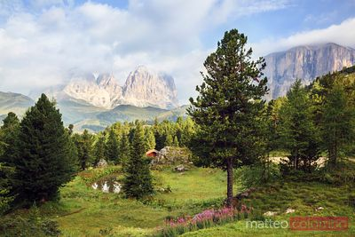 Summer in the italian alps Dolomites Italy
