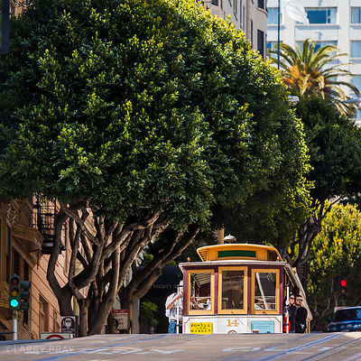 Cable car coming over the brow of a hill under trees in San Francisco, USA