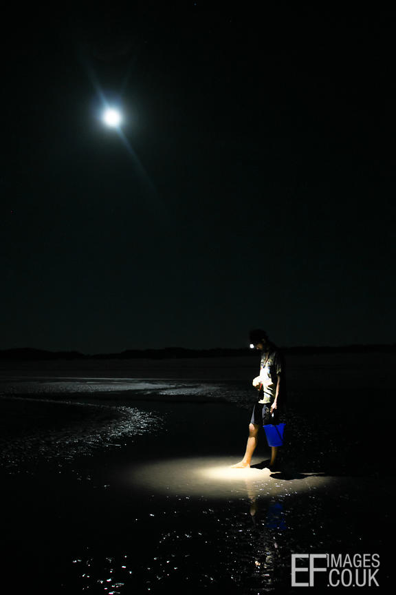 Man With A Bucket On A Moonlit Beach At Night