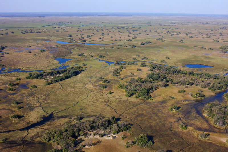 Aerial view of the Okavango Delta with high water levels, Botswana,  June 2014.