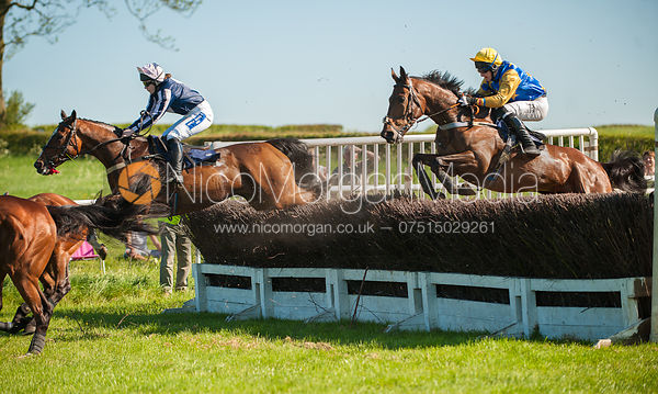Race 6 - Meynell and South Staffordshire Hunt point to point 2012